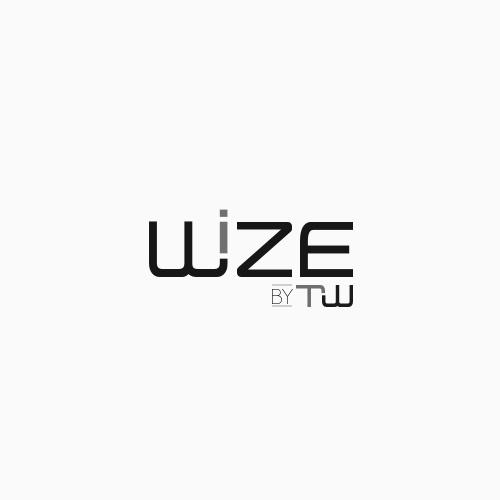 WIZE Logo